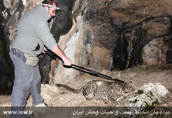 طبیعت شهرستان درگز - محمود براتی