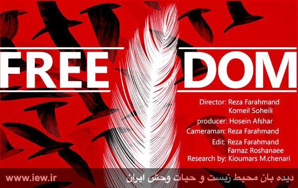 مستند آزادی