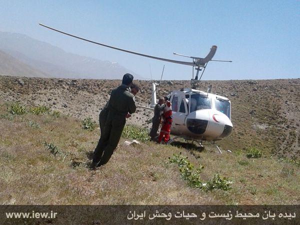 950310 khangormaz 11 با تلاش نیروهای هلال احمر، محیطبان همدانی از مردن و مرگ نجات یافت