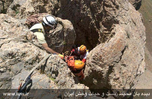 950310 khangormaz 3 با تلاش نیروهای هلال احمر، محیطبان همدانی از مردن و مرگ نجات یافت