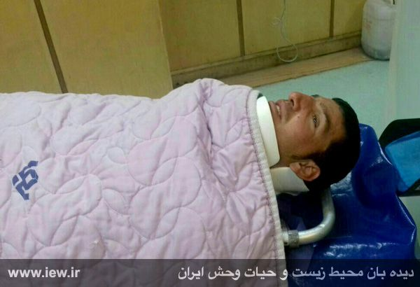950310 khangormaz 6 با تلاش نیروهای هلال احمر، محیطبان همدانی از مردن و مرگ نجات یافت