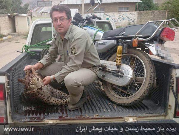 دستگیری شکارچی پلنگ توسط یگان محیط زیست پارک ملى کیاسر مازندران