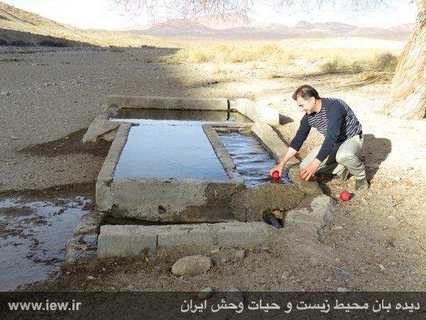 [تصویر:  961022_bahramghoor-11.jpg]