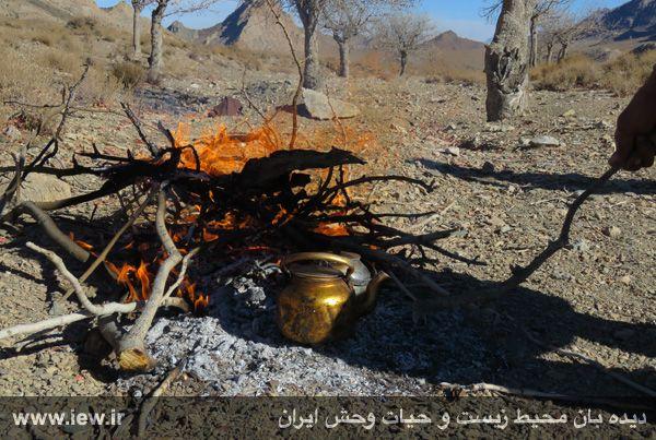 [تصویر:  961022_bahramghoor-121.jpg]