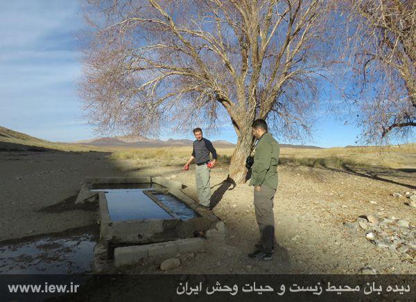 [تصویر:  961022_bahramghoor-36.jpg]