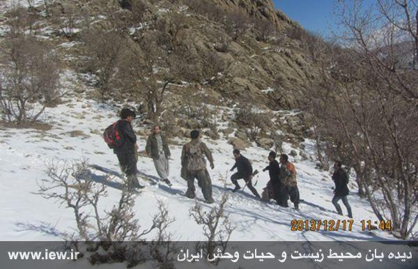 دستگیری شکارچیان غیرمجاز